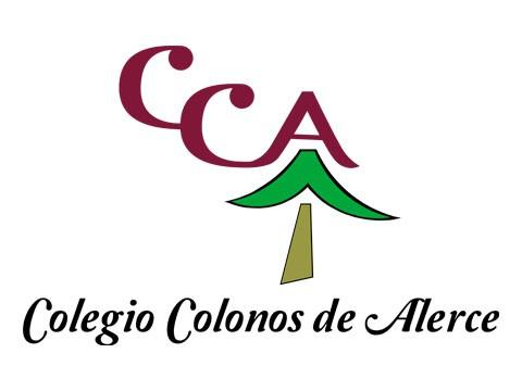 Colegio Colonos - WDesign - Empresa de Diseño Web