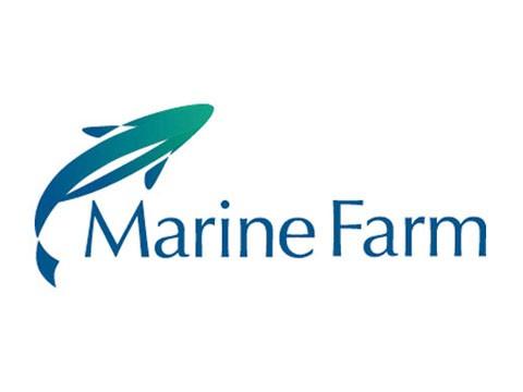 Marinefarm - WDesign - Empresa de Diseño Web