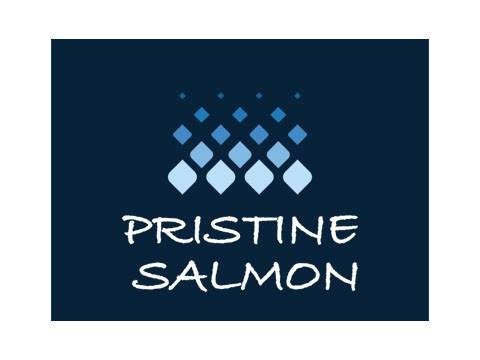 Pristine Salmon - WDesign - Empresa de Diseño Web