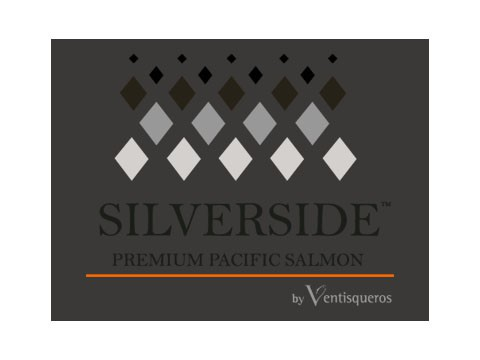 Silver Side - WDesign - Empresa de Diseño Web